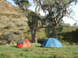 Flinders Bush Retreats - image 3