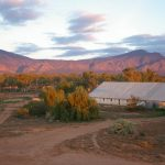 Have a real outback experience | Station Stays SA